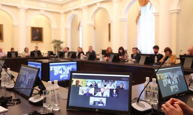 International Advisory Council online-meeting