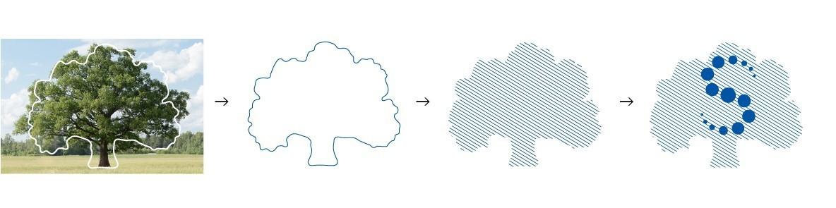 формирование дерева.jpg